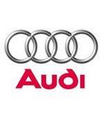 Audi gray card