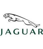 Jaguar registration card