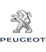 Peugeot gray card