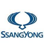 Ssangyong gray card