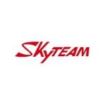 Carte grise Sky Team