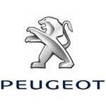 Carte grise Peugeot 107 3P 1.0E Blue Lion