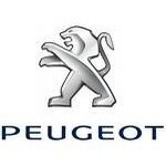 Carte grise Peugeot Partner Tepee 1.6 Hdi Fap (92Ch)