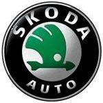 Carte grise Skoda Superb Combi 2.0 Tdi (190Ch) Scr Fap Dsg7 Et Active Ambition Business Style